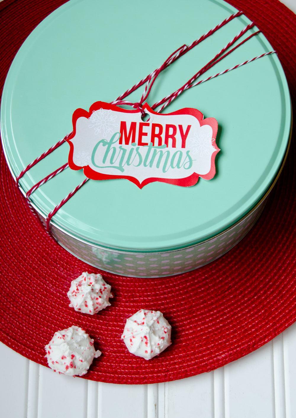 MerryChristmasTagsbyLoveTheDay3