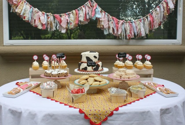 Western Cowgirl Party Ideas:: Party Feature on Love The Day
